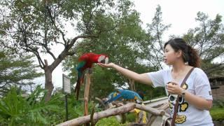 六福村高美濕地二日遊