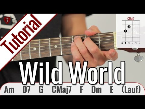 Cat Stevens (Yusuf Islam) - Wild World | Gitarren Tutorial Deutsch