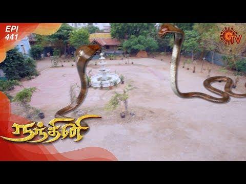 Nandhini - நந்தினி   Episode 441   Sun TV Serial   Super Hit Tamil Serial