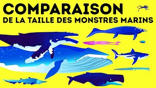 Mégalodon vs Baleine bleue : qui est le géant des mers n°1