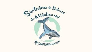 Santuário de Baleias do Atlântico Sul