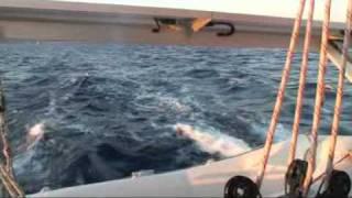 Outremer 45 Croatia Capella Catamaran