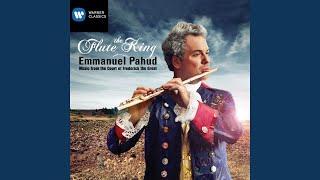 Hamburger Sonata for flute and basso continuo in G Major: I. Allegretto