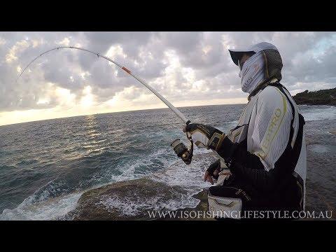 IFLTV: ISO fishing for pelagics