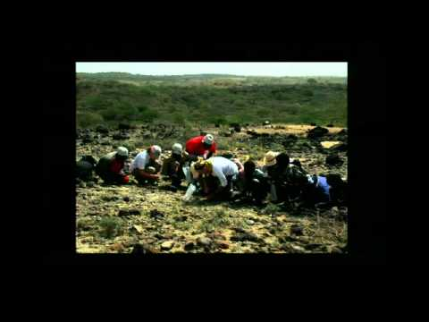 """Ethiopia the Cradle of Human Origins: New Discoveries from the Field"""