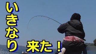 いきなり魚に引っ張られる