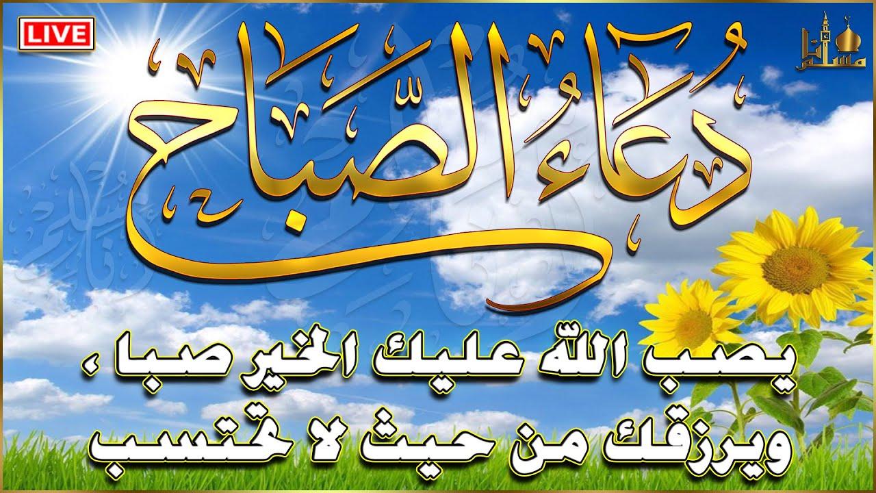 دعاء الصباح بأجمل صوت💛 مناظر طبيعية رائعة 🌼 بصوت القارئ محمد الشهاوي Adkar Sabah Morning dua