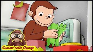 Curioso come George 🐵 Cibo per le Piante 🐵 Cartoni Animati per Bambini 🐵 Stagione 3