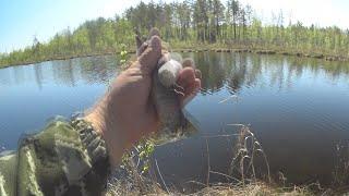 Рыбалка на озере Провалился в воду ВЕСЕЛУХА