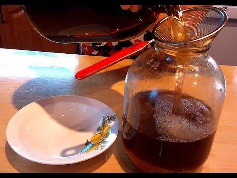 Как приготовить напиток из чайного гриба в домашних условиях