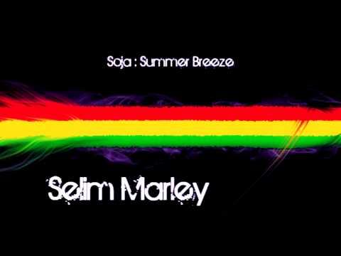 SOJA - Summer Breeze + Lyrics