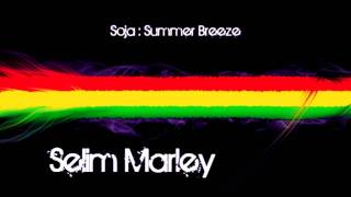 SOJA - Summer Breeze + Lyrics