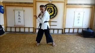 Уроки в школе  эффективной самообороны JKD
