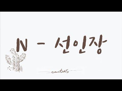 [韓中歌詞] VIXX N - 선인장(Cactus) 🌵