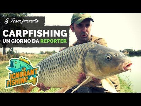 CarpFishing | Un giorno da Reporter