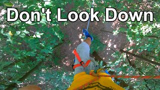 Don't Look Down! | High Ropes Course