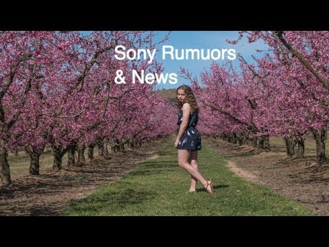 Sony Rumours & News Sony a9 S-Log Sony a7000 Samyang 135mm Profoto A1