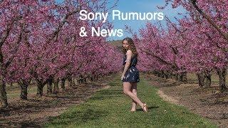 Sony Rumours & News Sony a9 S-Log Sony a7000 Samyang 135mm Profoto A1