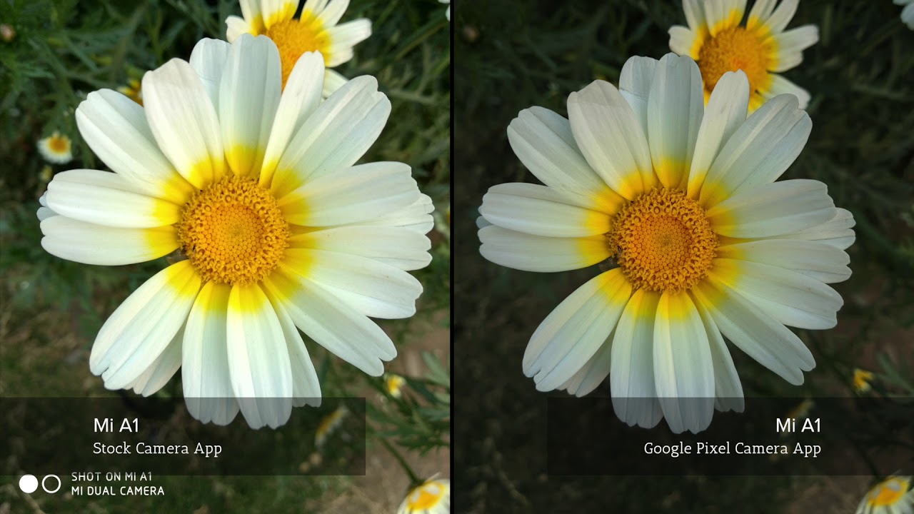 Mi A1 Photo Comparison | Stock Camera App Vs Google Pixel Camera App