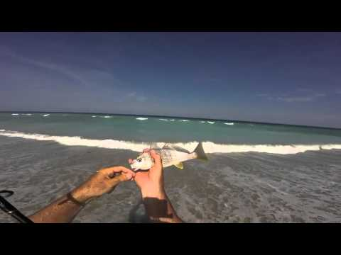 How To Catch Tons Of Croakers Surf Fishing Florida Plus Free Online Surf Fishing Course