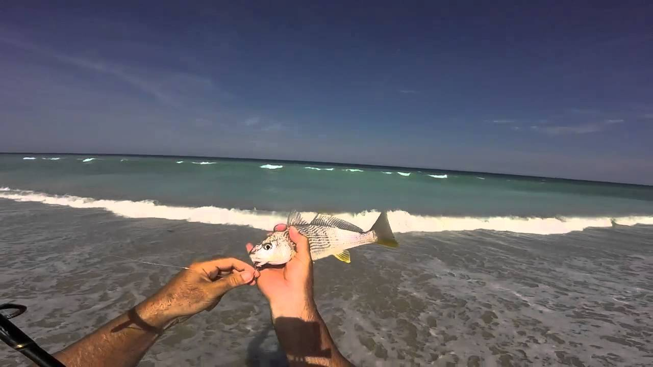 How To Catch Tons Of Croakers Surf Fishing Florida