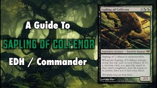 MTG - Treefolk Tribal - A Guide To EDH / Commander Sapling of Colfenor for Magic: The Gathering