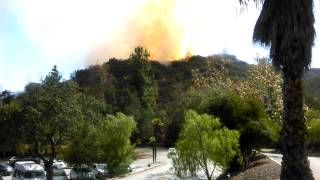 Griffith Park forest fire