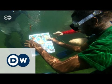Protecting Kenya's fish stocks | DW English