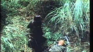 Fatal Mission Trailer 1989
