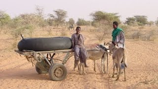 Sahel Pastoralists: Improving the Livelihoods of Sahel Pastoral Communities