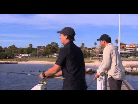 Destination WA - Fishing The Swan River