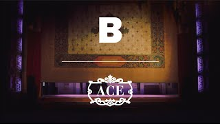 Magazine B 29th Issue: Ace Hotel