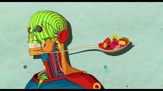 Cómo el azúcar afecta el cerebro - Nicole Avena