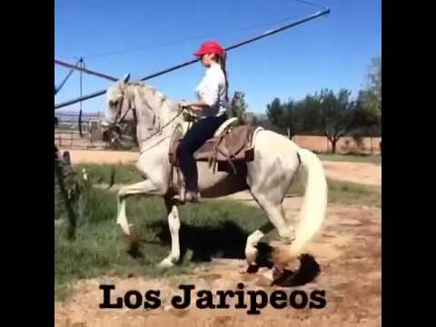 mujer montando caballo   newhairstylesformen2014