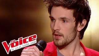 Supertramp Goodbye Stranger Baptiste Defromont The Voice France 2013 Prime 2