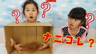 箱の中身は何のスクイーズ?スクイーズ当てゲームでイタズラしちゃう♡himawari-CH