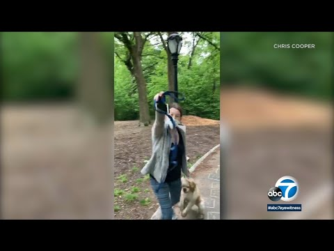 Central Park: White Woman ID'ed As Amy Cooper In NYC Calls Police On Black Man Over Dog Leash | ABC7