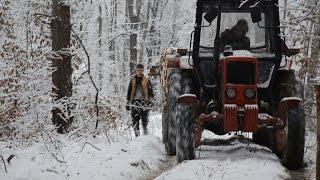 Praca w lesie Bieszczady zima