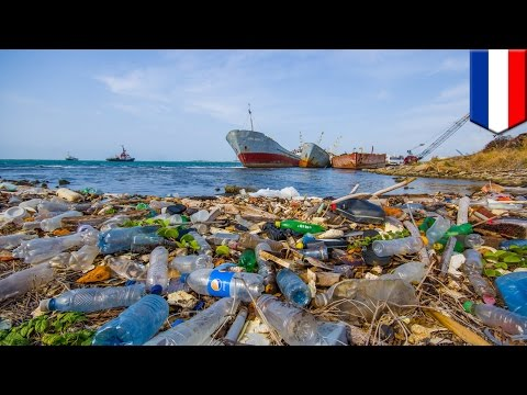 Ocean plastic: Great Pacific Garbage Patch to be cleaned of plastic waste in 2018 - TomoNews