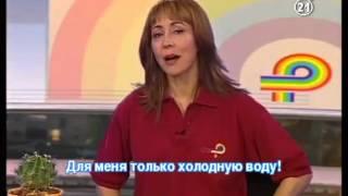 ★★★★★Уроки языку Иврит для русскоговорящих. 21
