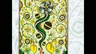Steve Earle- I Feel Alright.wmv