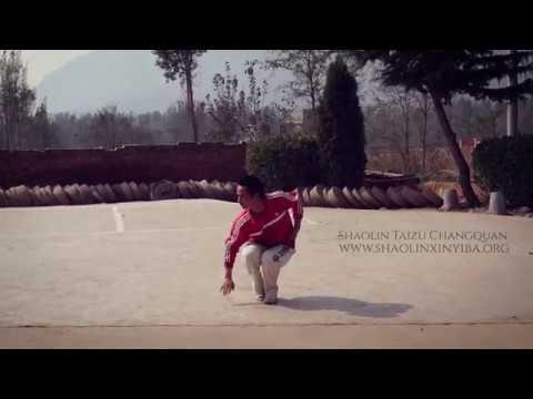 Shaolin Taizu Changquan by Yang Xinhui