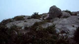 Força dos ventos na Pedra da Mina 2 (Rebel Lands)