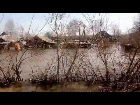 знакомства по казахстану петропавловск