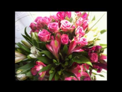 Каталог роз из Голландии с фото, сорта голландских роз