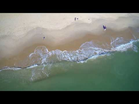 VA Beach Drone Footage of Dolphin Hunting/Playing