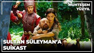 Sultan Süleyman'a Suikast - Muhteşem Yüzyıl 25.Bölüm