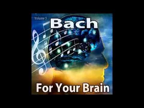 Prelude No. 10 In E Minor, BWV 855