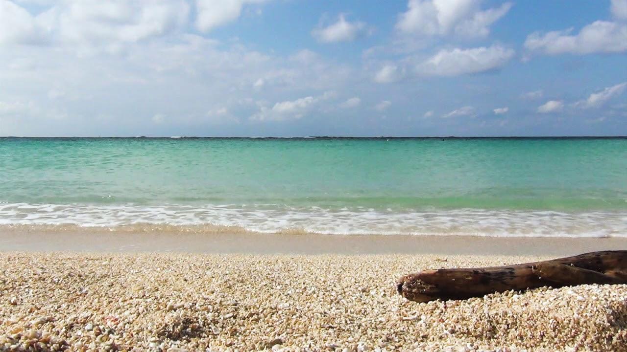 【ASMR】The beautiful Okinawa sea