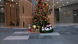 2018.12.7. 크리스마스 트리 점등 ㅎㅎ